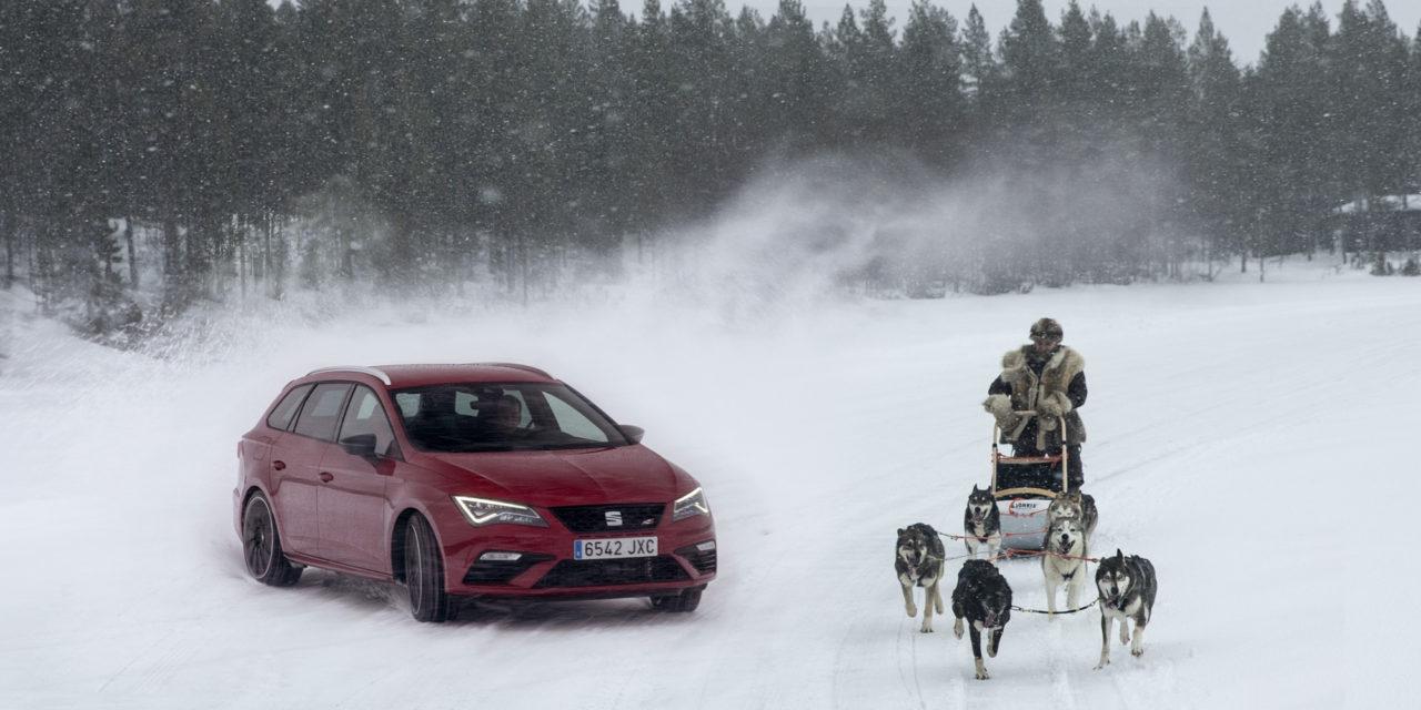 El Seat Leon Cupra 300Cv Frente a 6 Huskies: Divertido reto en Laponia